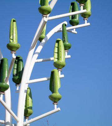 Les arbres à vent du Plessis-Robinson